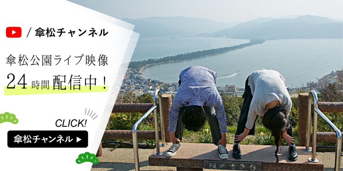 傘松チャンネル